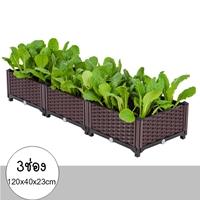 กระบะปลูกผัก-Balcony-vegetable-box(3ช่อง)