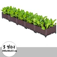 กระบะปลูกผัก-Balcony-vegetable-box(5ช่อง)