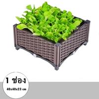 กระบะปลูกผัก-Balcony-vegetable-box(1-ช่อง)