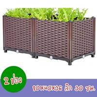 กระบะปลูกผัก-Balcony-box-แบบลึก-30-ซม.(2-ช่อง-ไม่มีขา)