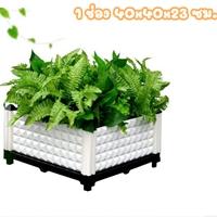 กระบะปลูกผัก-Balcony-vegetable-box-สีขาว(1-ช่อง)