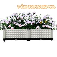 กระบะปลูกผัก-Balcony-vegetable-box-สีขาว(2-ช่อง)