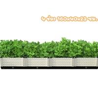 กระบะปลูกผัก-Balcony-vegetable-box-สีขาว(4-ช่อง)