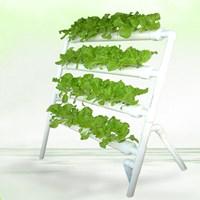 ระบบปลูกผักไฮโดรโปนิกส์-36-หลุม-ครบชุด-พร้อมที่เพาะเมล็ดพันธ์ผัก