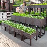 กระบะปลูกผัก-Balcony-vegetable-box-ครบชุด-10-ช่อง