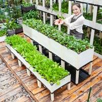กระบะปลูกผัก-Balcony-vegetable-box-ครบชุด-10-ช่อง-สีขาว