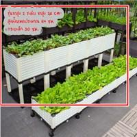 กระบะปลูกผัก-Balcony-box-แบบลึก-30-ซม.(5-ช่อง-ขา-26-cm-พร้อมฐาน)-สีขาว